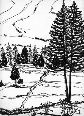 Abeti sulla neve